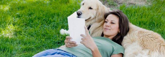 cama-pet-cachorro-gato-leitura-amizade-001